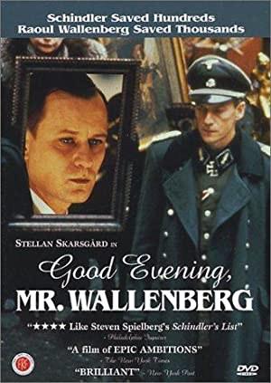 Good Evening, Mr. Wallenberg (1990)